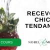 Cours de cuisine Thermomix : RECEVOIR CHIC ET TENDANCE